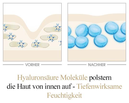 Ultra Feuchtigkeit Hyaluronsäure-Moleküle